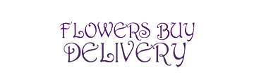 Flowers Buy Delivery logo