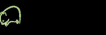 Wombat Cricket logo