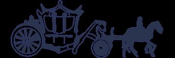 Metropolitan School of Business and Management logo